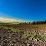 Gepflogene Felder in der Schweiz Lizenzfreies Stockbild