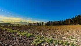Gepflogene Felder in der Schweiz Lizenzfreie Stockbilder