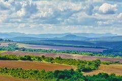 Gepflogene Felder und Berge Stockfotografie