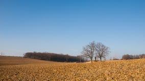 Gepflogene Felder und blauer Himmel Stockfoto