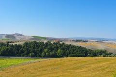 Gepflogene Hügel von Toskana Stockfotografie