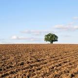 Gepflogener Ackerland-Boden Lizenzfreies Stockbild