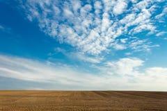 Gepflogenes Feld stockfoto
