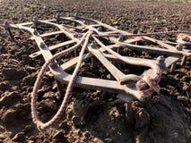 Gepflogenes Feld für Kartoffel im braunen Boden auf offener Landschaftsnatur stockfoto