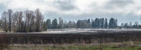 Gepflogenes Feld am Frühling lizenzfreie stockbilder