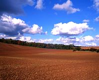 Gepflogenes Feld, Gloucestershire, England. Stockfotografie