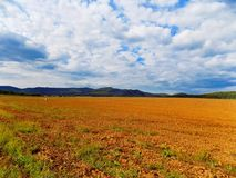 Gepflogenes Feld, Hügel und Himmel Stockfotografie