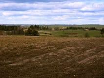 Gepflogenes Feld im Frühjahr, Ackerland unter Ernten Lizenzfreie Stockfotos