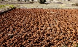 Gepflogenes Feld im roten Lehm, Spanien Lizenzfreie Stockfotos