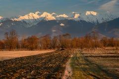 Gepflogenes Feld im Sonnenuntergang-Licht Lizenzfreie Stockfotografie