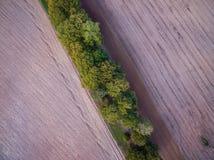 Gepflogenes Feld, Landseite stockfotos