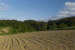 Gepflogenes Feld, Landwirtschaft Lizenzfreies Stockfoto