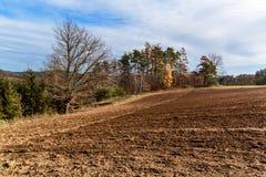 Gepflogenes Feld Leben auf dem Bauernhof Landwirtschaftliche Industrie Landschaft in der Tschechischen Republik Herbst auf den Ge stockbilder