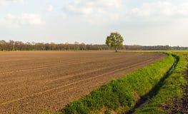 Gepflogenes Feld nahe bei einem Abzugsgraben am Anfang der Frühlingsmeere Lizenzfreie Stockfotos
