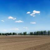 Gepflogenes Feld und blauer Himmel Lizenzfreie Stockfotos