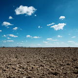Gepflogenes Feld und blauer Himmel Stockfoto
