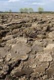 Gepflogenes Feld Vorbereitung für Ackerbau Stockfoto