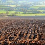 Gepflogenes landwirtschaftliches Feld Stockfotos