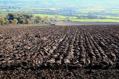 Gepflogenes landwirtschaftliches Feld Stockfoto