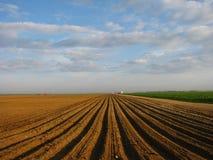 Gepflogenes landwirtschaftliches Feld Lizenzfreies Stockbild