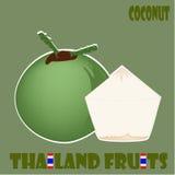 Geplaatst fruit: Kokosnoot van Thailand Stock Afbeelding