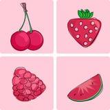 Geplaatst pictogram - rode vruchten Stock Afbeeldingen