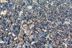 Geplaatste aard: overzeese kiezelstenen onder waterachtergrond Royalty-vrije Stock Afbeeldingen