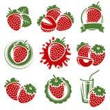 Geplaatste aardbeien Vector Stock Afbeelding