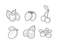 Geplaatste bessenillustraties vector illustratie