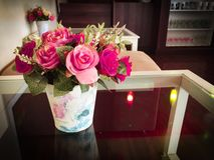 Geplaatste bloem Stock Afbeeldingen