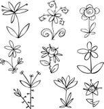 Geplaatste bloemen Stock Foto
