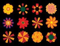 Geplaatste bloemen,   vector illustratie