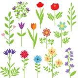 Geplaatste bloemen vector illustratie