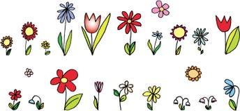geplaatste bloemen Stock Afbeelding