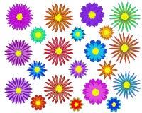 Geplaatste bloemen - Illustratiebloemen stock illustratie