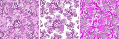 geplaatste bloemenachtergronden Stock Foto's