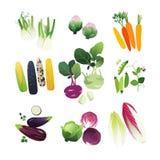 Geplaatste de groenten van de klemkunst Stock Afbeelding