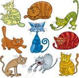 Geplaatste de katten van het beeldverhaal Stock Foto