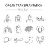 Geplaatste de lijnpictogrammen van de orgaanoverplanting Stock Foto's