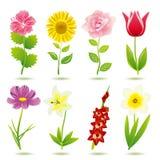 Geplaatste de pictogrammen van de bloem Royalty-vrije Stock Foto