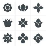 Geplaatste de pictogrammen van de bloem Royalty-vrije Stock Fotografie