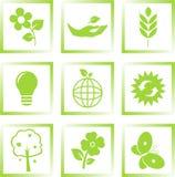 Geplaatste de pictogrammen van de ecologie Stock Fotografie