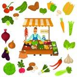 Geplaatste de pictogrammen van de groentenkleur Natuurvoedingembleem in het midden voor Web en mobiel ontwerp Royalty-vrije Stock Foto's