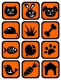Geplaatste de pictogrammen van het huisdier Royalty-vrije Stock Afbeeldingen