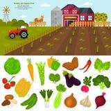 Geplaatste de pictogrammen van kleurengroenten De illustratie van de de landbouwkleur voor Web en mobiel ontwerp Stock Afbeelding