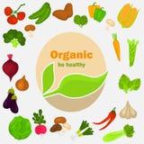 Geplaatste de pictogrammen van kleurengroenten Natuurvoedingembleem in het midden voor Web en mobiel ontwerp Stock Foto
