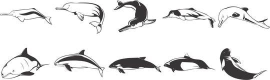 Geplaatste de pictogrammen van vissen Stock Foto