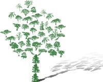 Geplaatste de silhouetten van de boom royalty-vrije illustratie