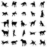 Geplaatste de silhouetten van de hond Stock Afbeeldingen