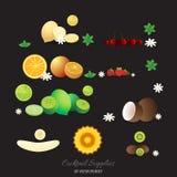 Geplaatste de vruchten van cocktailsdecoratie stock illustratie